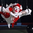 Circus air acrobat. Photo....