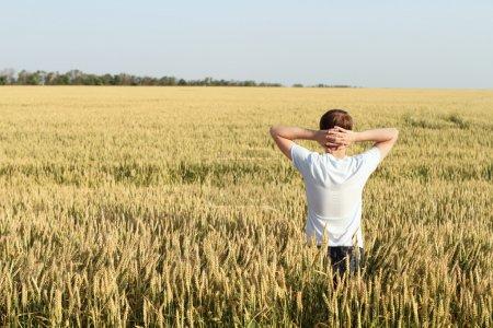 Photo pour Homme au coucher de soleil joying blé champ - image libre de droit