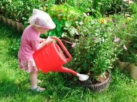 Photo pour Petit jardinier avec un bailleur - image libre de droit