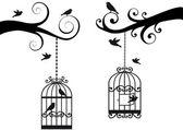 Bircage and birds vector