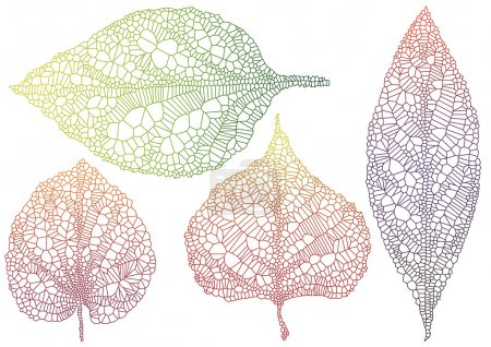 Illustration pour Ensemble de feuilles automne texturées, vector background - image libre de droit