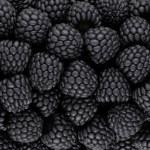 Black blackberry texture or background. CG render...
