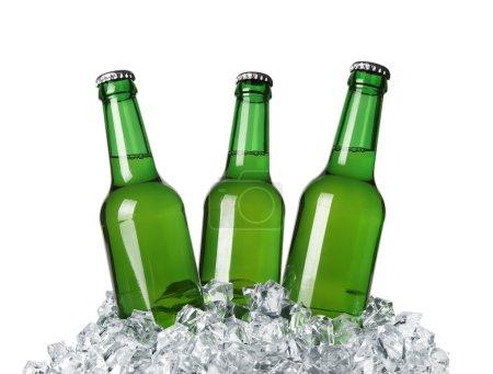 Foto de Botellas en el hielo aislado sobre fondo blanco - Imagen libre de derechos