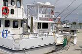 Fishing Charter Boats