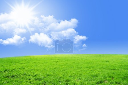 Photo for Fresh green grass with bright blue sky - Royalty Free Image
