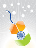 Indian flag effect on the mouse vector illustration