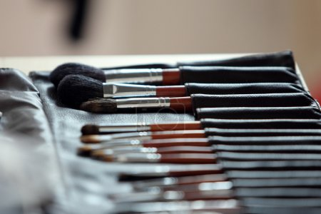 Brushes of the visagiste