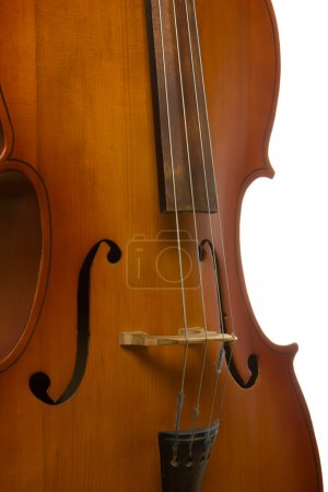 Photo for Musical instrument cello on white background - Royalty Free Image