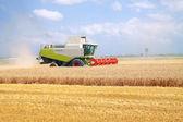 Kombinovat pro sklizeň pšenice