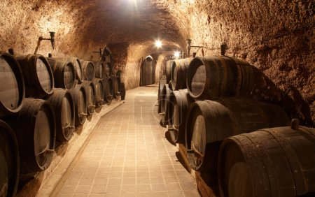 Photo for Corridor in winery with old wine cask - Royalty Free Image