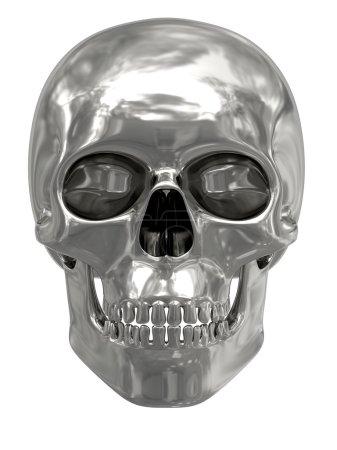 crâne argent ou de platine sur blanc