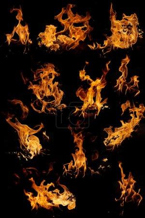 Foto de Conjunto de muchas fotos de llama aisladas - bueno para el montaje - inserción a otro concepto - Imagen libre de derechos
