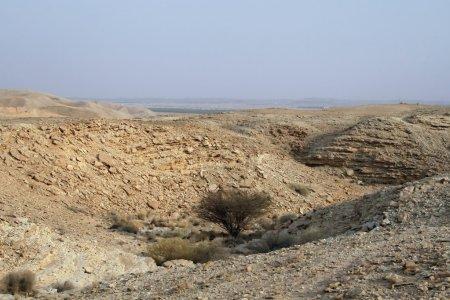 Photo for Stone desert near Riyadh (Saudi Arabia) - Royalty Free Image