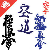 Martial Arts Big set Symbols