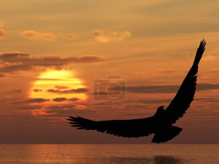 Photo for Eagle above ocean. Picturesque sunset. 3D rendering - Royalty Free Image