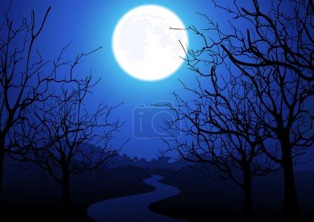 Illustration for Night road. Vector illustration - Royalty Free Image