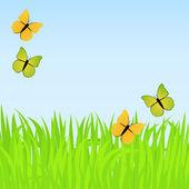 Jarní pozadí s motýly