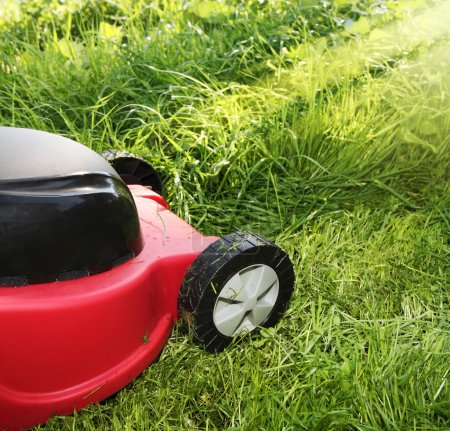 Lawnmower on green grass in sunny day
