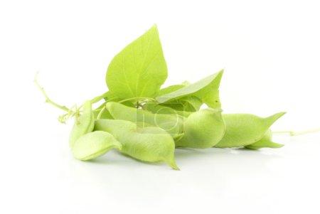 Photo pour Gousses de haricot vert frais, isolées sur fond blanc . - image libre de droit