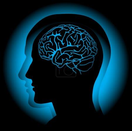 Illustration pour Profil de la tête humaine avec cerveau visible. Vecteur - image libre de droit