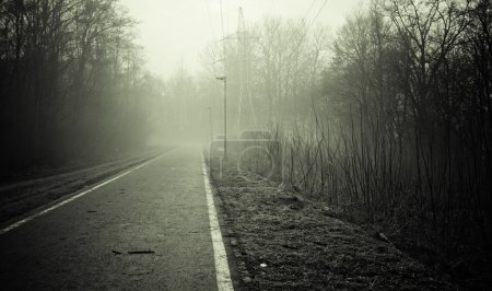 Photo for Black and white empty road somewhere in the fog - Royalty Free Image