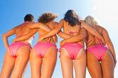 Sexy bikini girls