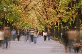 marche automne