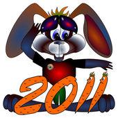 Rabbit a symbol 2011 Chinese new years
