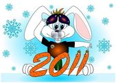 Rabbit a symbol 2011 Chinese new year vector