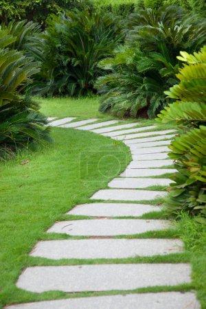Photo pour Foopathe à travers les arbustes dans le jardin - image libre de droit