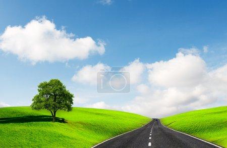 Photo pour Route de campagne parmi les champs verts - image libre de droit