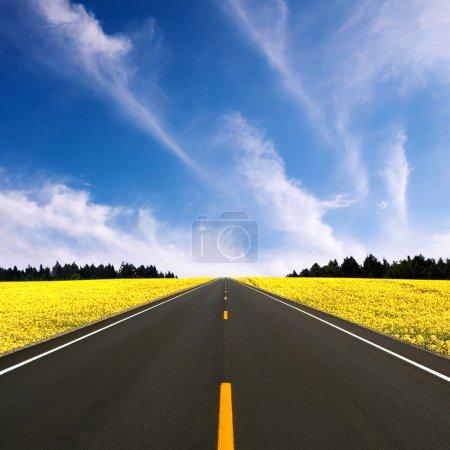 Photo pour Route droite - image libre de droit