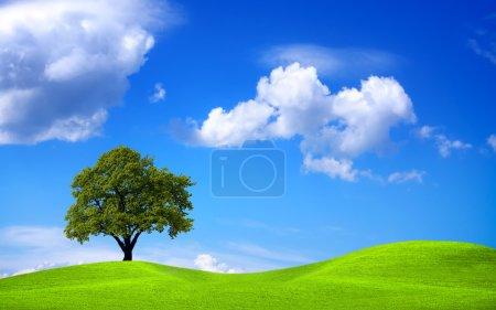 Green nature, environment poster