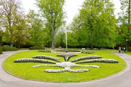 Foto de Callejón en el parque - Imagen libre de derechos