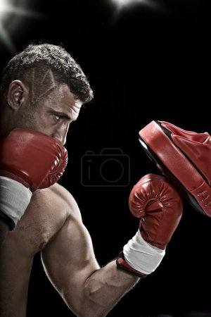 Photo for Low key portrait of boxer getting ready for fight - Royalty Free Image
