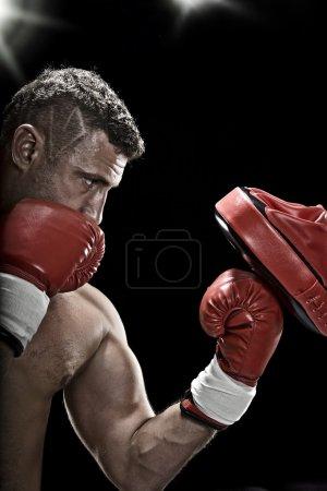 Photo pour Portrait de clé basse du boxeur se prépare pour la lutte - image libre de droit