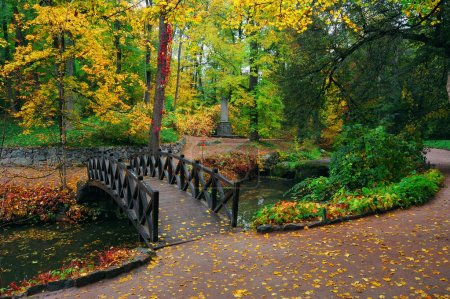 Photo for Autumn landscape in park with the river and the bridge - Royalty Free Image