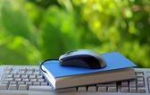Avec le livre et le clavier, la souris