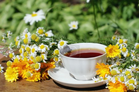 Photo for Cup of herbal tea with chamomile and calendula flowers - Royalty Free Image