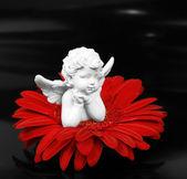 Angel a květina