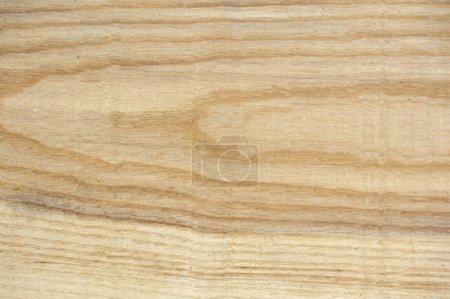 texture du bois scié de cendres