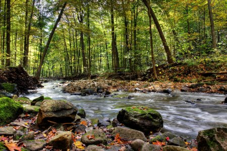 Photo for Beautiful waterfall on small forest river in the Ontario region - Royalty Free Image