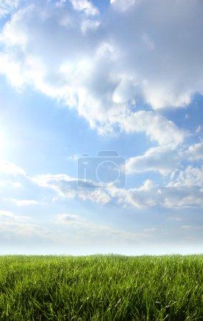 Foto de Mercado de Es Canar sur fond de ciel bleu - Imagen libre de derechos