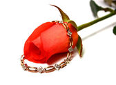 Rose and gold bangle
