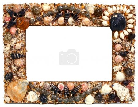 Photo for Frame for photo from marine cockleshells isolated on white background - Royalty Free Image