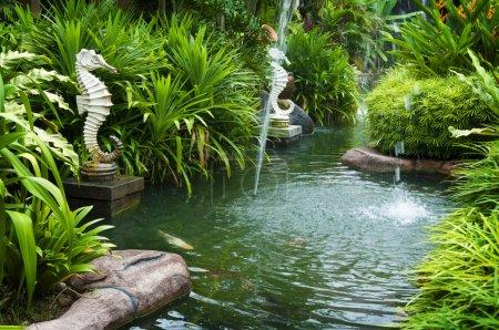 Photo pour Vue jardin zen tropical avec fontaine et plantes vertes . - image libre de droit