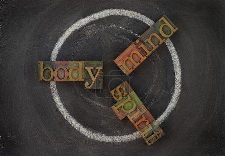Photo pour Concept de cycle de bien-être (corps, esprit, esprit) - typographie en bois vintage type craie de blocs, blanche sur tableau noir - image libre de droit