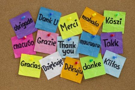 Photo pour Merci en seize langues - notes collantes colorées avec écriture manuscrite sur le tableau d'affichage en liège - image libre de droit