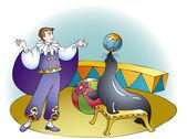 Circus show seals