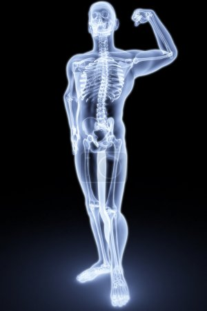 Photo pour Le corps humain par rayons X. 3d rendu - image libre de droit